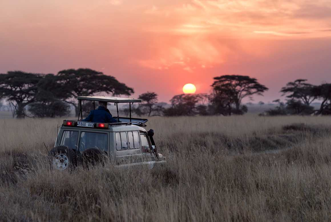 Sunrise during a Safari