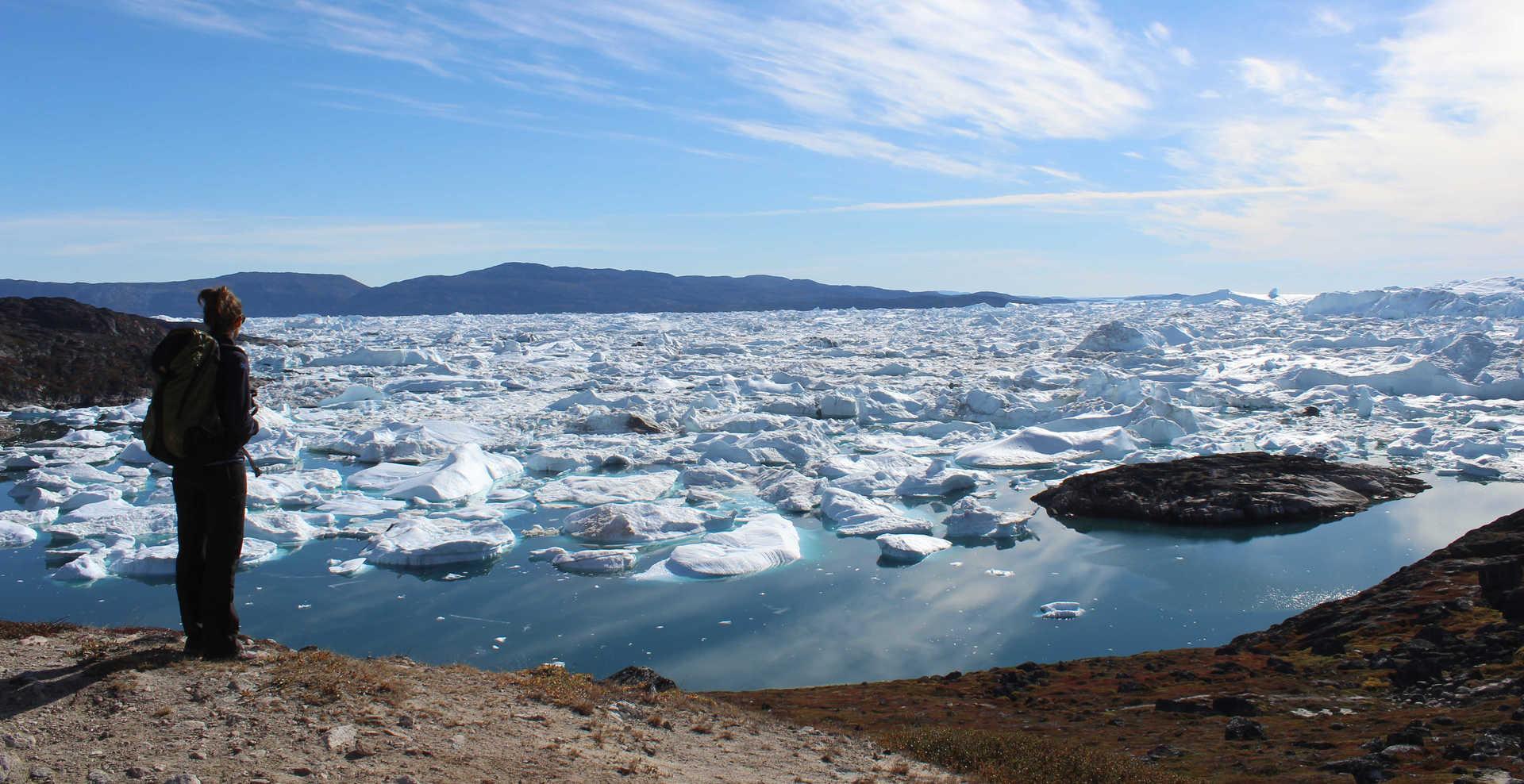Contemplation in Disko Bay, Greenland