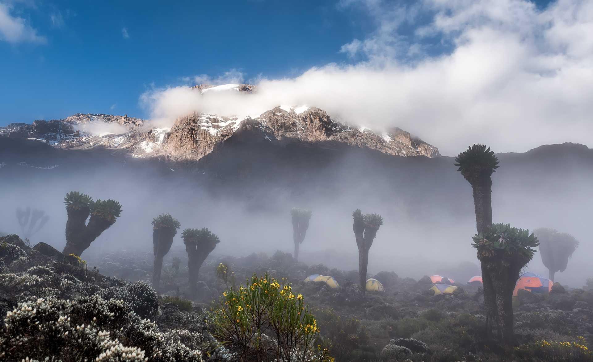 Fog at Kilimanjaro Barranco camp