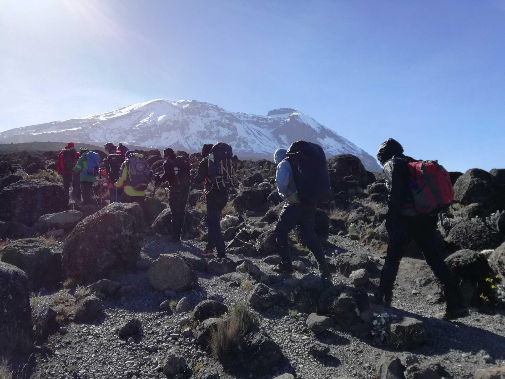 Hikers climbing Mount Kilimanjaro