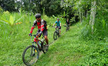 Batur to Ubud Cycling