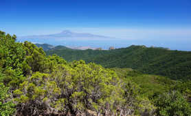 Hiking in La Gomera island, Canarias