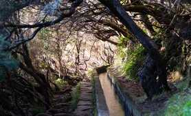 Levada (water channel) on Madeira