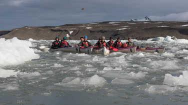 Group of kayak among iceberg