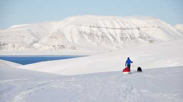 Expedition in high Arctic