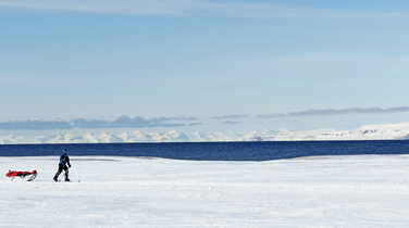 Skiing with pulka in Arctic