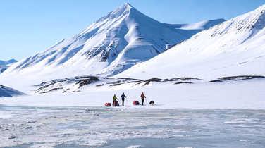 Trip in ski in Arctic