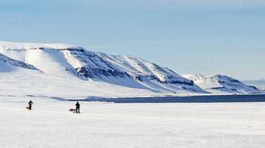 Von Post raid on skis with pulka