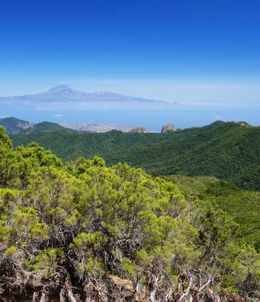 Hiking in La Gomera island, Canarias