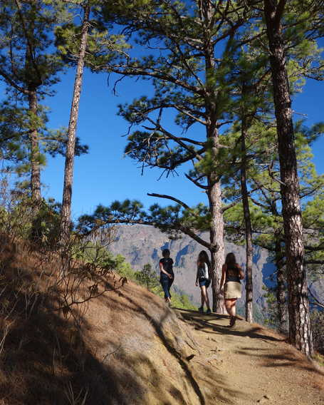 Hikers in La Palma island