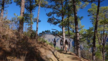 Hikers in La Palma island