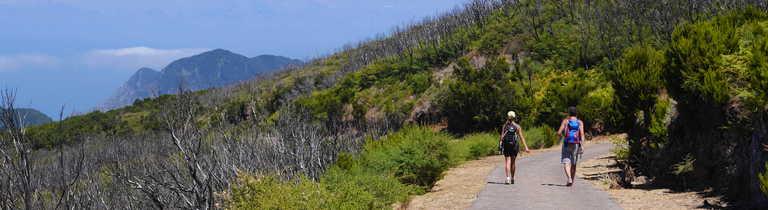 Hikers in Garajonay National Park