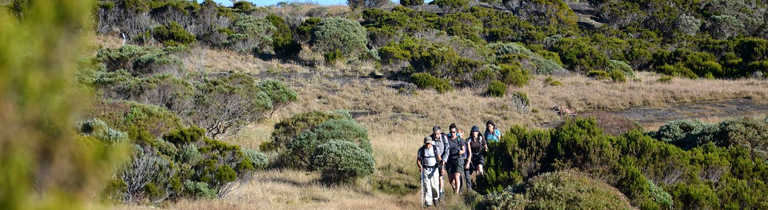 Hikers in the Reunion Island