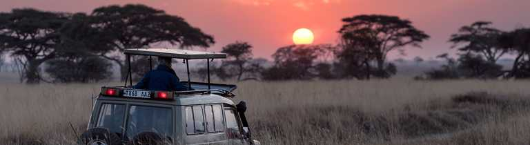 Sunrise during a Safari