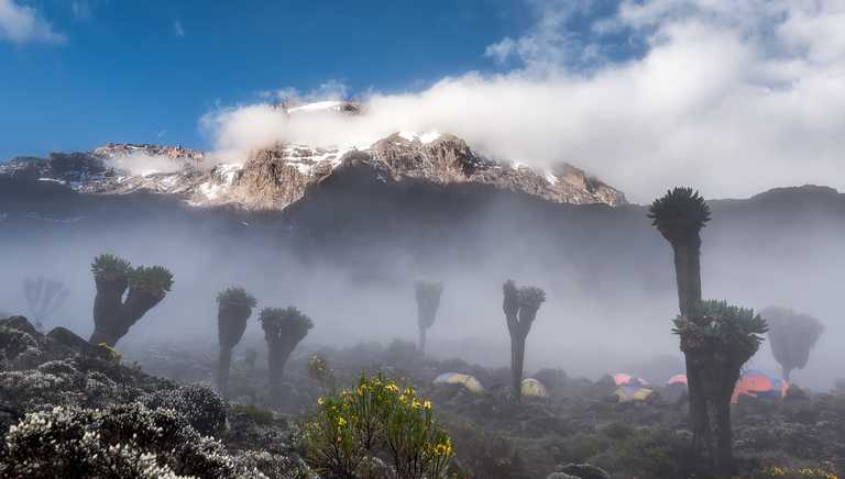 Fog at Kilimanjaro Barranco camp