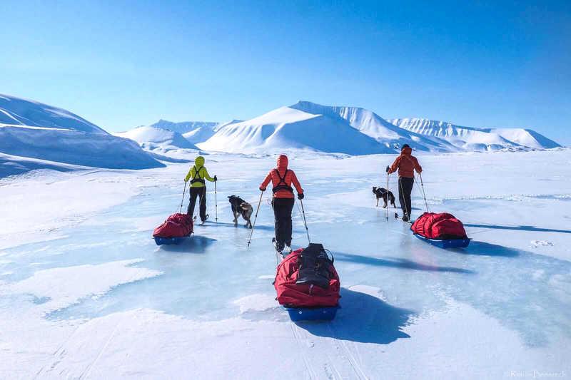 Ski Pulka on ice floe in Svalbard