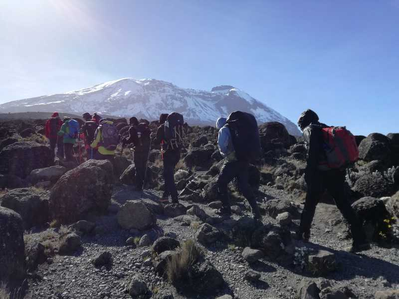 Hikers climbing Mount Kilimanjaro